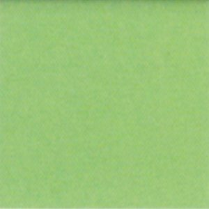 Copricuscino Genius Color di Biancaluna lime 1023