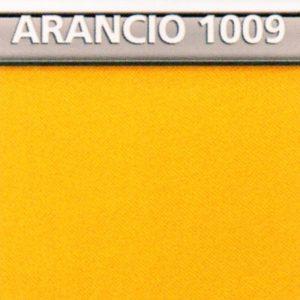 Arancio 1009 Genius Color di Biancaluna