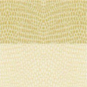 Trapunta beige in cotone Chromo di Gabel 520