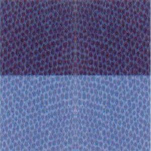 Trapunta blu in cotone Chromo di Gabel 289