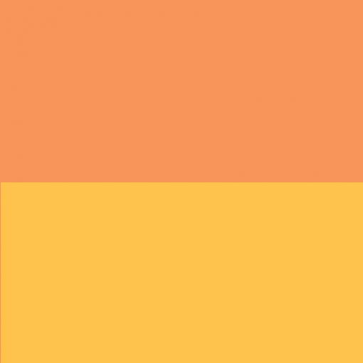 Arancio GN-200