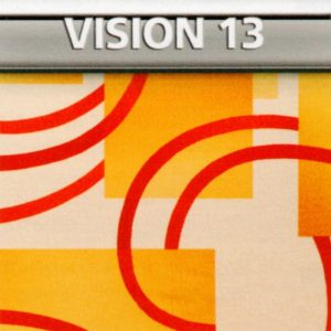 Vision 13 Genius Vision di Biancaluna