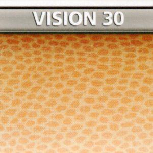 Vision 30 Genius Vision di Biancaluna