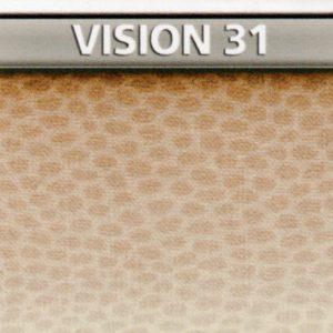 Vision 31 Genius Vision di Biancaluna