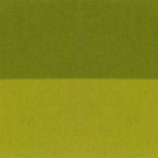 Trapuntino Indicolor di Biancaluna verde