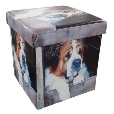Cubo Contenitore Portatutto di Daunex