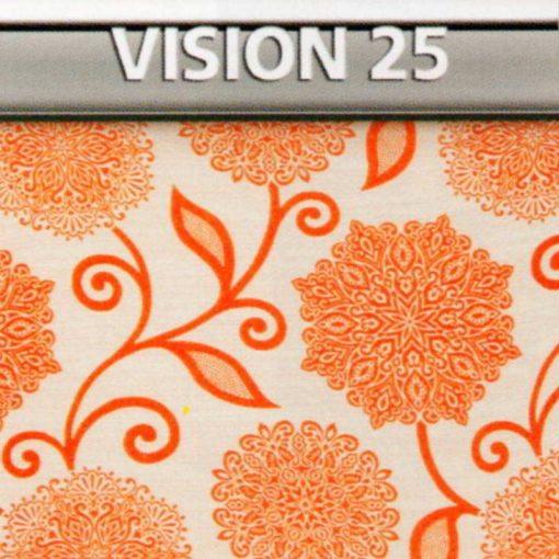 Vision 25 Genius Vision di Biancaluna