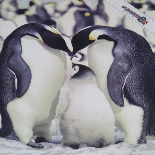Plaid Morbidotto Pinguini Daunex con un lato agnellato che offre un buon punto di calore che raffigura una simpatica famiglia di pinguini